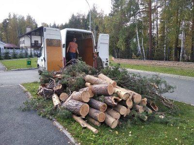 распил-и-вывоз-деревьев-409-2
